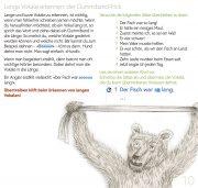 Rechtschreib-Start 1: miau langer Vokal