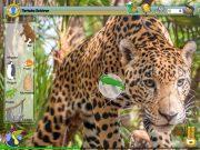 JUNIOR Xplore Regenwaldinsel: Tierische Gefahren