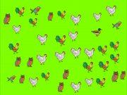 dob pro – Suchstrategien: Wo ist die Ente?